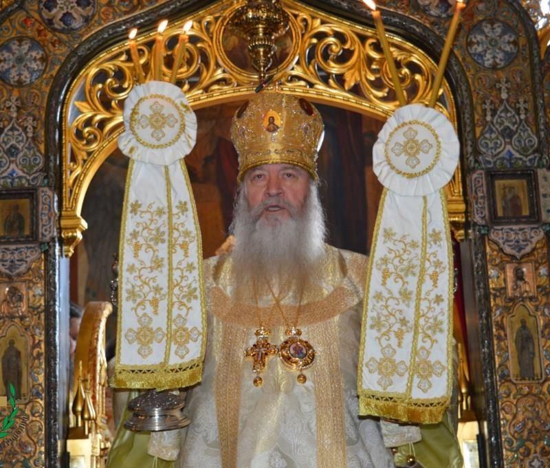 День памяти святителя Серафима, архиепископа Богучарского (58)